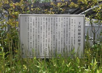 下河原線広場公園2.jpg