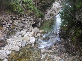 木曽森林4.jpg