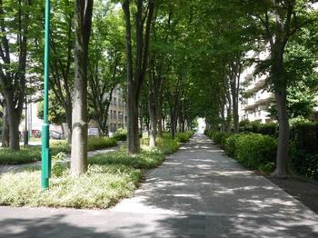 東京競馬場前.jpg