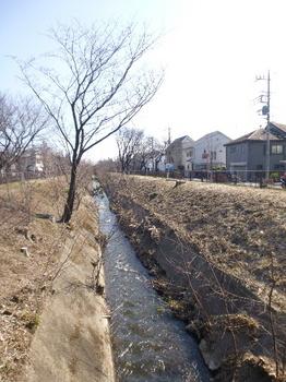 玉川上水.jpg